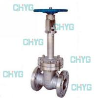 China American forged steel cryogenic valves wholesale