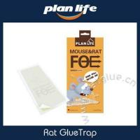 Rat And Mouse Size Peanut Butter Scented Glue Trap Snake Glue Trap