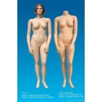 China FFAT-1-Puls size mannequin wholesale