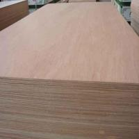 China Ordinary plywood with meranti wood species on sale