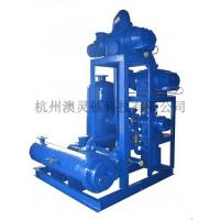 China JZJ2B series water ring unit level 4 wholesale