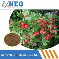 China Ratio Extract Butcher\'s Broom Extract wholesale