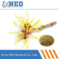 China Ratio Extract Witch Hazel Extract wholesale