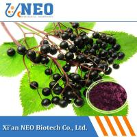 China Ratio Extract Elderberry Extract wholesale