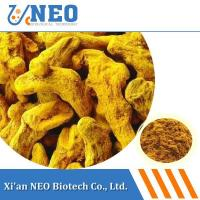 China Ratio Extract Curcuma Extract wholesale