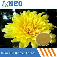 China Ratio Extract Chrysanthemum Extract/Dendranthema morifolium extract wholesale