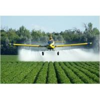 China Fungicides - Global Market Outlook (2016-2022) on sale