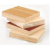China Best price commercial plywood sheet from China manufacturer on sale