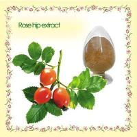 fructus rosae p.e. Touchhealthy supply rose hip oil/rose oil price in india/rose oil
