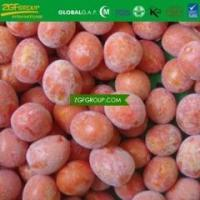 China IQF frozen new season crop fresh cherry tomato in competitive price in bulk wholesale