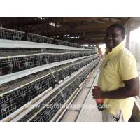 Buy cheap Layer Cage from wholesalers