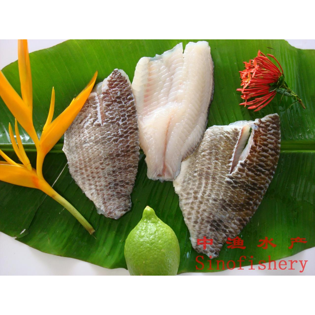 Buy cheap skin on tilapia fillet from wholesalers