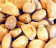 Buy cheap Dehydrated Garlic Clove from wholesalers