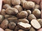 Buy cheap Sheanut from wholesalers