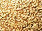 Buy cheap Sesame from wholesalers