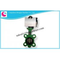 Cast Iron/Brass/Stainless Steel Lug Style Flanged Butterfly Valve