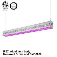 China Indoor Plant Growing Grow Light on sale