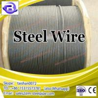 China Steel Wire For Nail Making/Galvanized Steel Wire Price wholesale