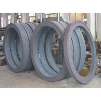 China Best Ti6Al4V Gr5 UNS R56400 forged ring wholesale