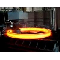 China forge ring gear for cement mixer for Perugia wholesale