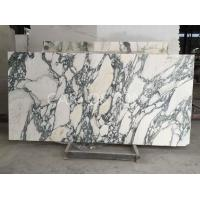 Buy cheap Arabescato Marble from wholesalers