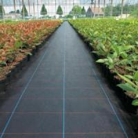 China PP Woven Weed Mat Weed Barrier Fabric wholesale