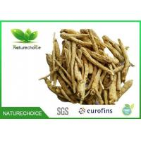 China Traditional Chinese Herb Ginseng Root on sale